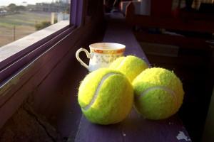 Теннисный Турнир Rolland Garros 2010