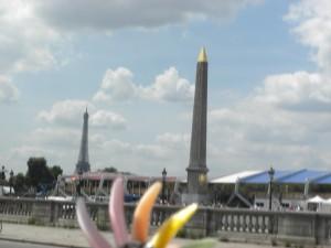 Где в Париже купить Maje?